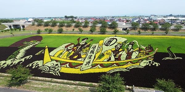 G: Rice Field Art