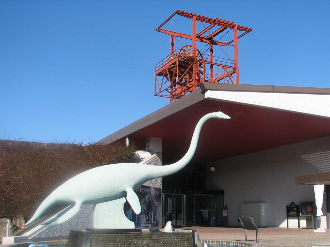 Coal & Fossil Museum
