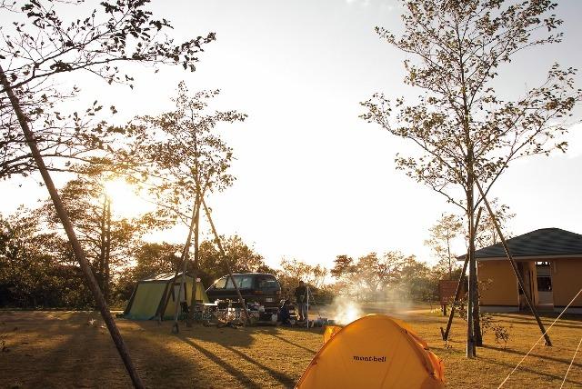 Tsutsujinomori Camping Site