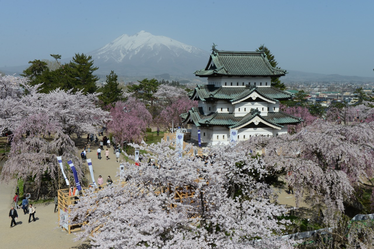 North Tohoku's top three cherry blossom views (3 days / 2 nights)