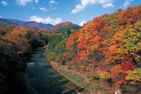 Nikkawa / Oku-Nikkawa Line