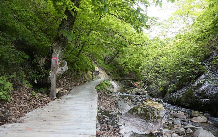 Jigokudani Walking Trail