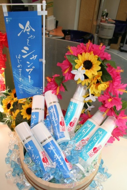 Hiyashi Shampoo